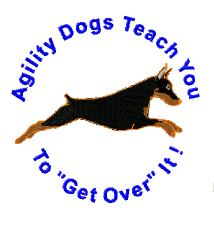 agility dogs teach