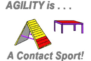 agility is contact sport
