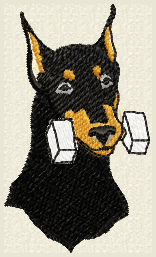 doberman with dumbell