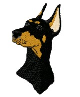 doberman head 2