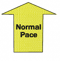 rally obedience design normal pace