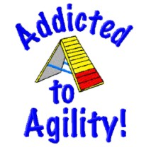 addicted to agility