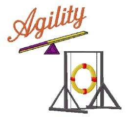 agility group with teeter and tire