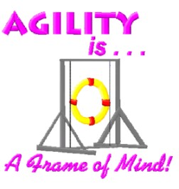 agility is a frame of mind
