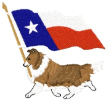 sheltie with texas flag